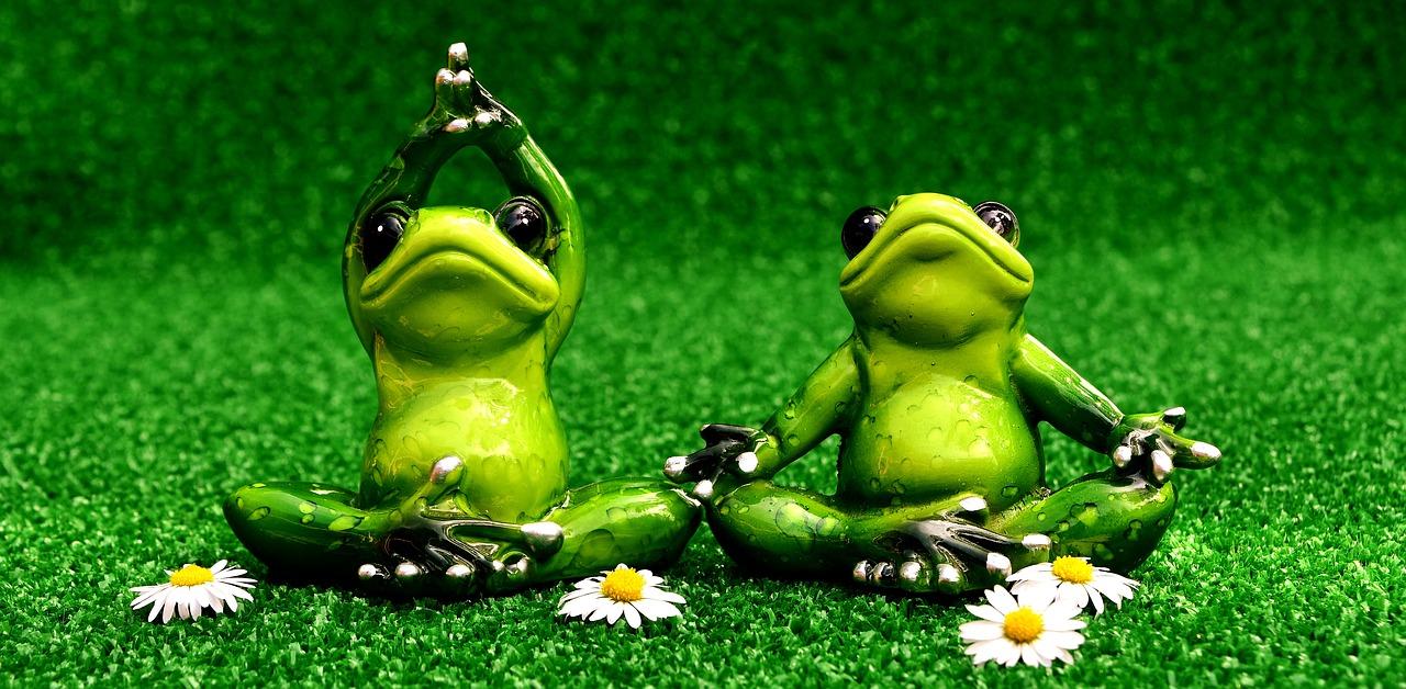 Apply online for yoga instructor